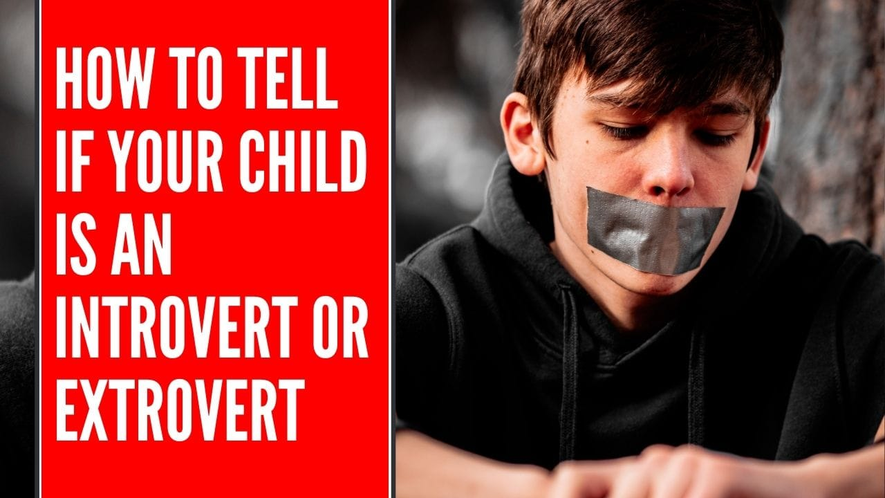 how to tell if your child is an introvert or extrovert